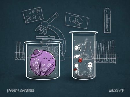 http://wirdou.files.wordpress.com/2012/07/in-vitro-love.jpg