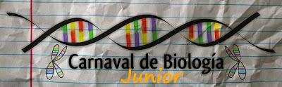 BiocarnavalJuniors