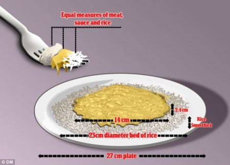 Imagen del curry ideal (Daily Mail) http://js.dailymail.co.uk/sciencetech/article-2481071/Physicist-creates-formula-perfect-ratio-rice-sauce-tucking-curry.html