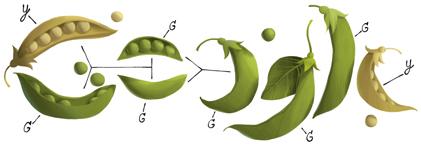 Gregor Mendel's 189th Birthday http://www.google.com/doodles/gregor-mendels-189th-birthday