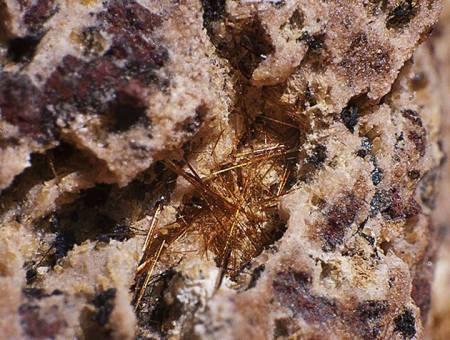 ecomminerals.com/minas-del-carmen/3439