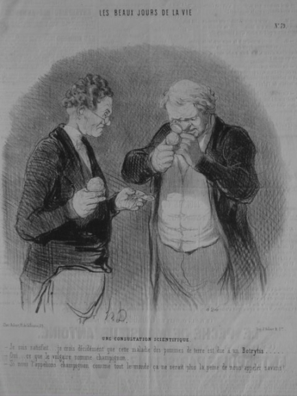 http://www.daumier-register.org/werkview.php?key=1167