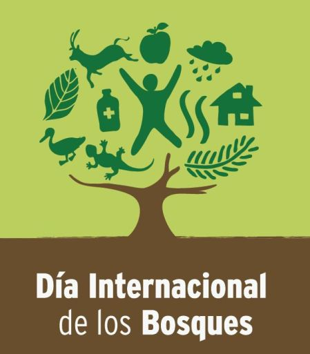 http://www.un.org/esa/forests/international-day-of-forests/index.html