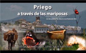http://davidballesteros-divulgacion.blogspot.com.es/2014/03/priego-traves-de-las-mariposas.html