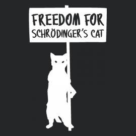 http://blog.masscience.com/la-paradoja-del-gato-de-schrodinger-explicada-con-sentido-del-humor/