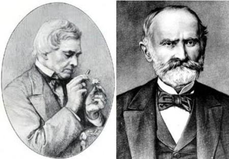 August Heinrich Rudolf Grisebach y Josif Pančić