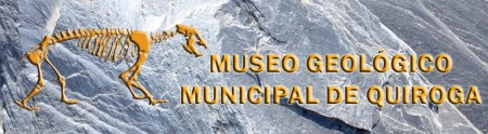 LOGO MUSEO GEOLÓGICO ESPAÑOL