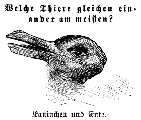 800px-Kaninchen_und_Ente