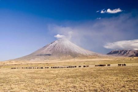 http://www.kuriositas.com/2014/07/africas-unique-volcano-ol-doinyo-lengai.html