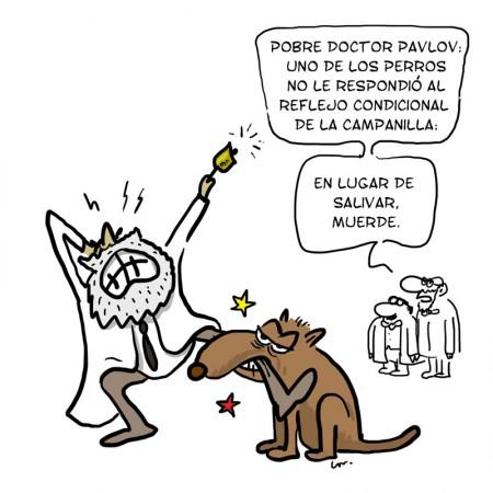 Doctor-Pavlov