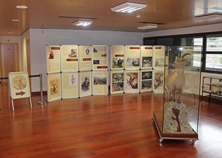 MuseoBucardoTorla1-KW