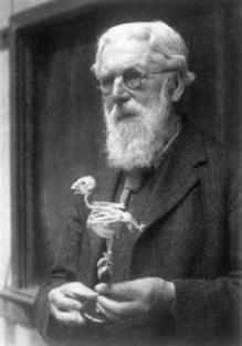 D'Arcy_Wentworth_Thompson_1860-1948