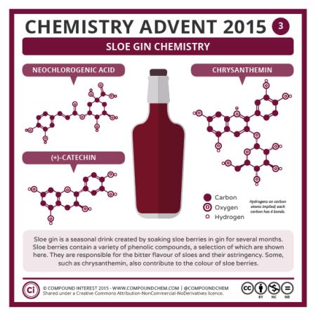 Sloe Gin Chemistry. © Compound Interest