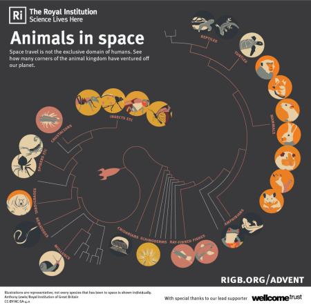 animalsinspace_tree_0