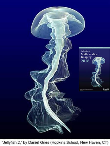 """Jellyfish 2"" de Daniel Gries."