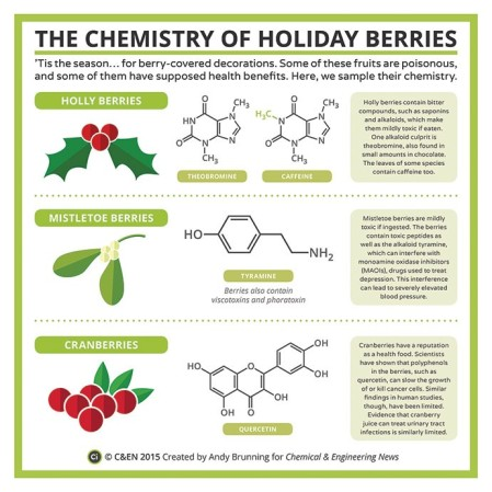 The Chemistry Of Holiday Berries. © Compound Interest