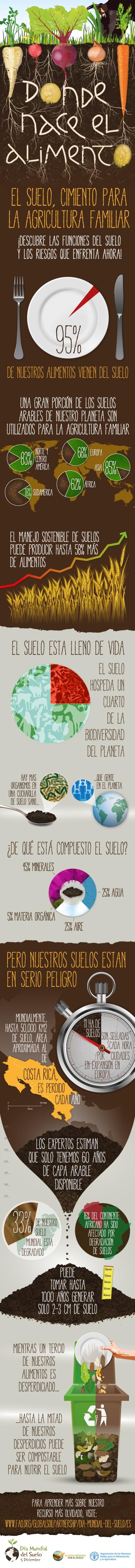 infographics_sp