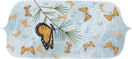 41 aniversario del descubrimiento de 'la montaña de las mariposas'