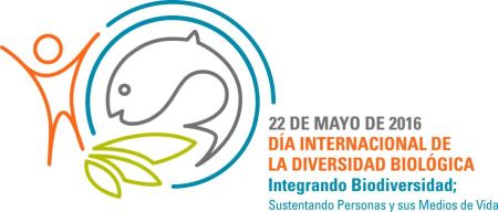 idb-2016-logo-es
