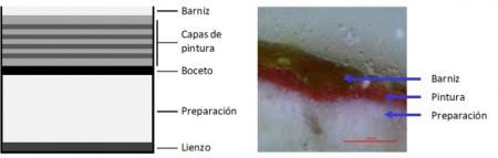 Imagen 1. Ejemplo de las capas de la que está formada una pintura al óleo sobre lienzo (izquierda) y una estratigrafía realizada en la Facultad de Bellas Artes de la UPV/EHU.