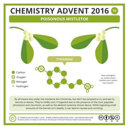 Poisonous Mistletoe. © Compound Interest.