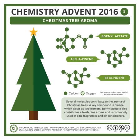 Christmas Tree Aroma. © Compound Interest.