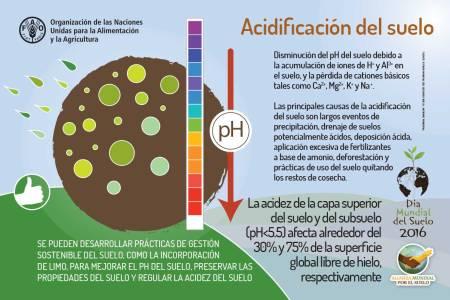 Acidificación del suelo.