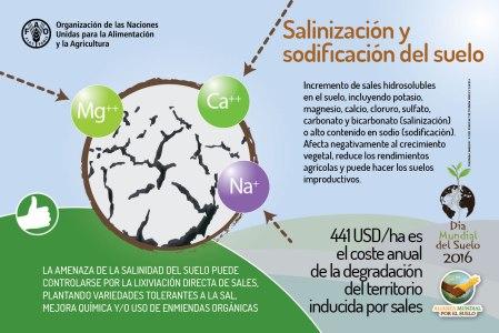 Salinización y sodificación.