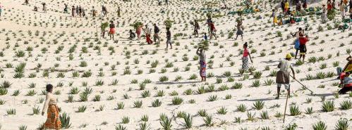 desertification_day_2021_0